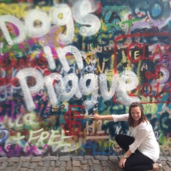 Dogs in Prague